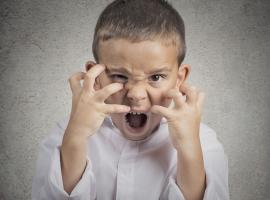 התפרצויות זעם בחייהם של הורים וילדים