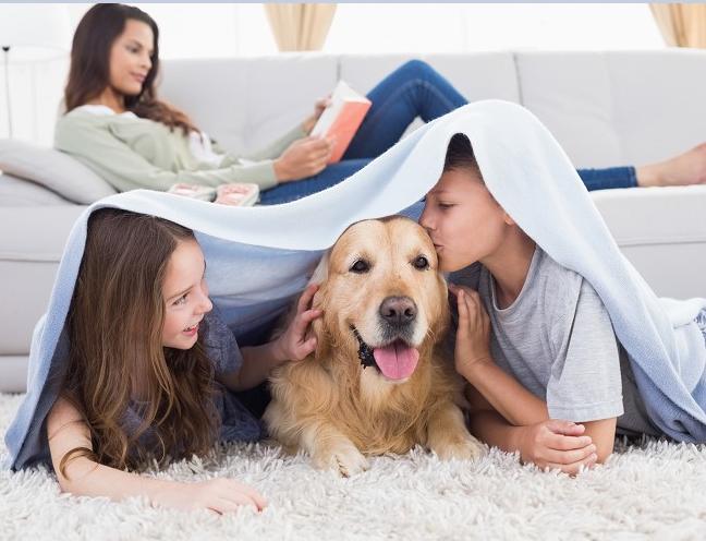 מה מרוויחים ילדינו מגידול חיות מחמד?