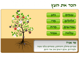 משחק לימודי לילדים הכירו את העץ