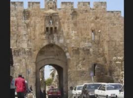 """שושנה דמארי בשיר """"שובי בת ירושלים"""""""