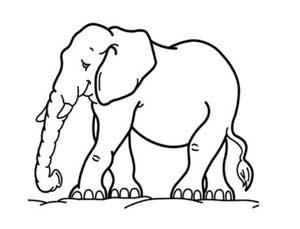 דף צביעה של פיל