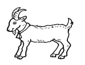 דף צביעה של עז עם קרניים