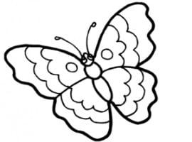 דף צביעה של פרפר יפה