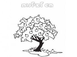 עץ בחג טו בשבט דפי צביעה