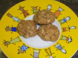 מתכון מחומרים טבעיים עוגיות פירות יבשים ושיבולת שועל